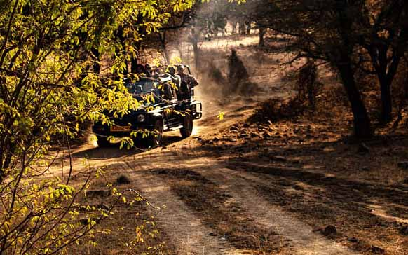 Delhi, Agra, Jaipur and Ranthambore – 4 Days Golden Triangle with Wildlife
